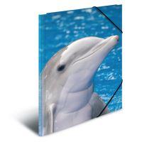 Doska s gumičkou PP A4 Delphins