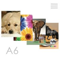 Butikkönyv A6, sima - 96 lapos, Children design