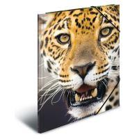 Doska s gumičkou PP A4 Leopard