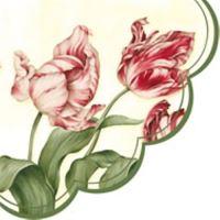 Szalvéta PAW R Tulipa Sylvestris