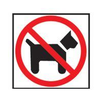 Információs címkék - Nincs bejegyzés a kutyával 114x114 mm